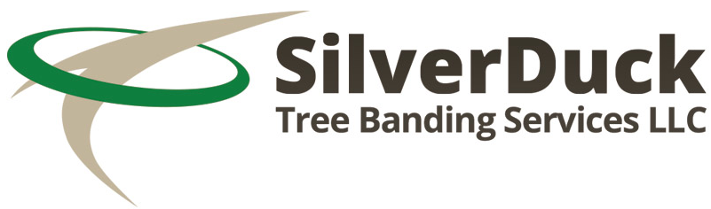 Tree Banding Professionals in Charlotte NC