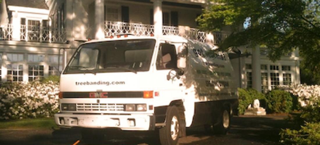 Tree Spray Truck